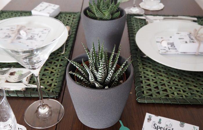 Summer Succulents Party # Eine klassische Variante für die Dekoration