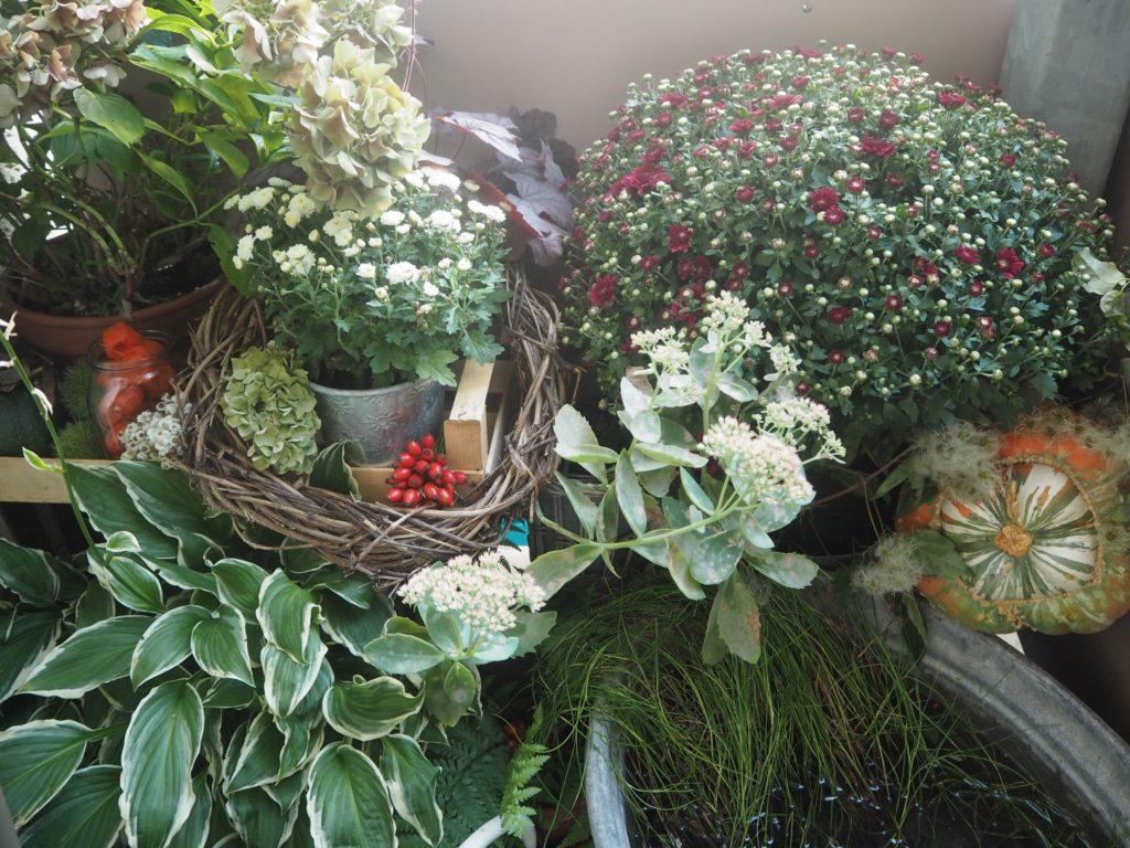 2016-10-skoen-och-kreativ-herbst-dekoration-balkon-gruen-7
