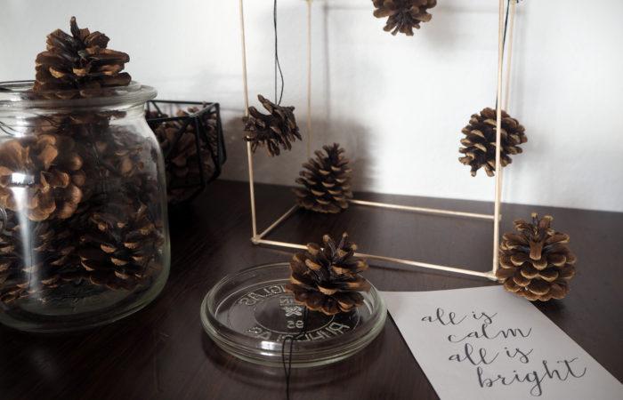 Xmas in a Jar #16: DIY-Baumschmuck aus Tannenzapfen