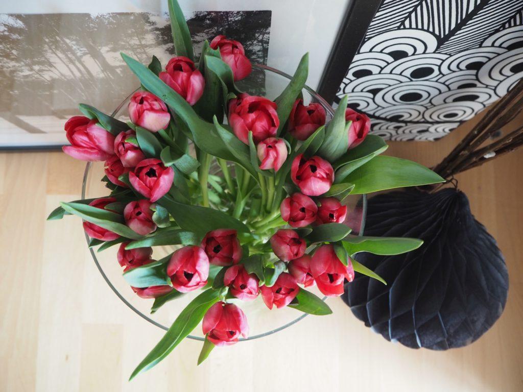 2017-03-skoen-och-kreativ-osterfreuden-deko-tulpen-fruehling (5)