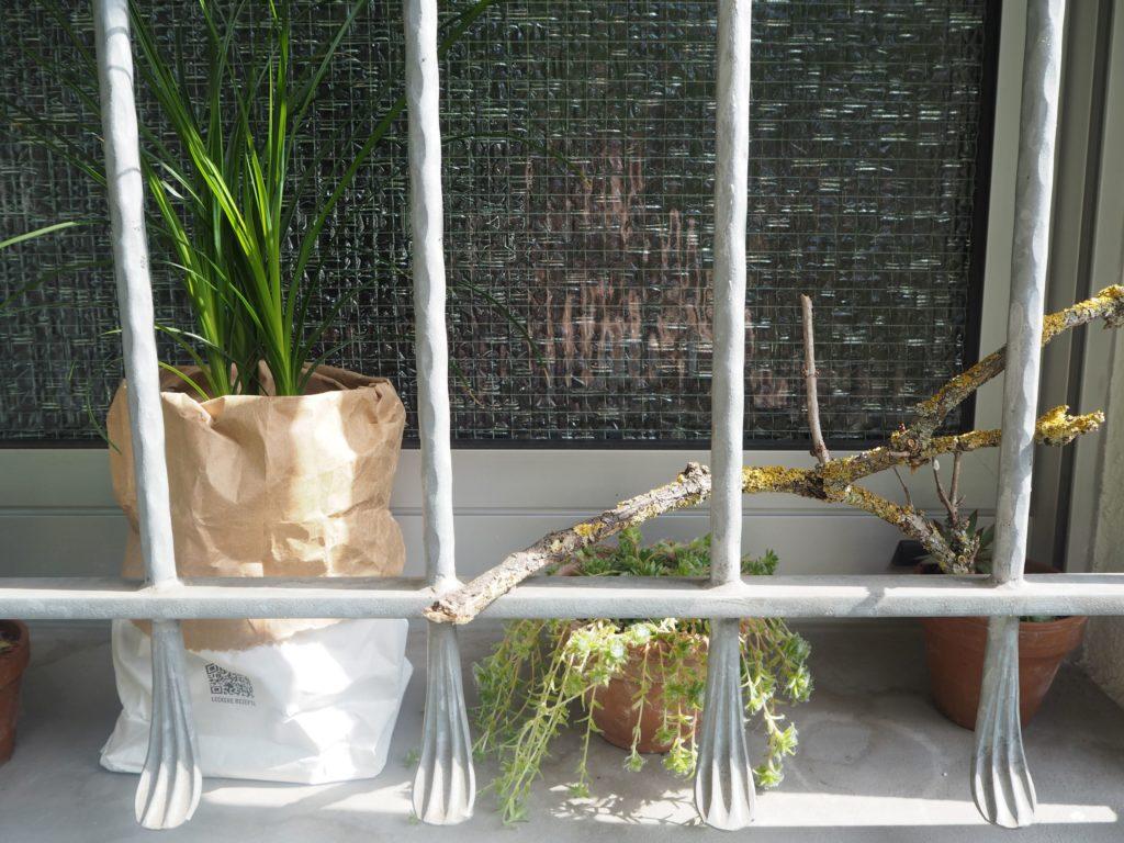 2017-07-skoen-och-kreativ-balkondekoration-urban-gardening-gelb-schwarz (2)