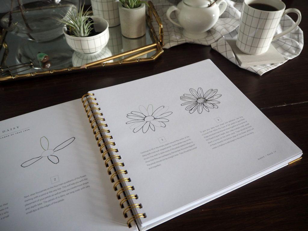 2017-09-skoen-och-kreativ-sonntagslektuere-rezension-september-how-to-draw-modern-florals (10)