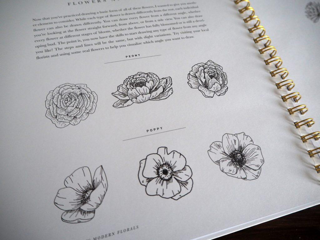 2017-09-skoen-och-kreativ-sonntagslektuere-rezension-september-how-to-draw-modern-florals (17)