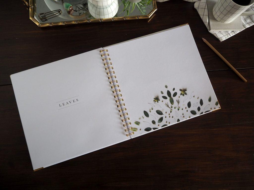 2017-09-skoen-och-kreativ-sonntagslektuere-rezension-september-how-to-draw-modern-florals (18)