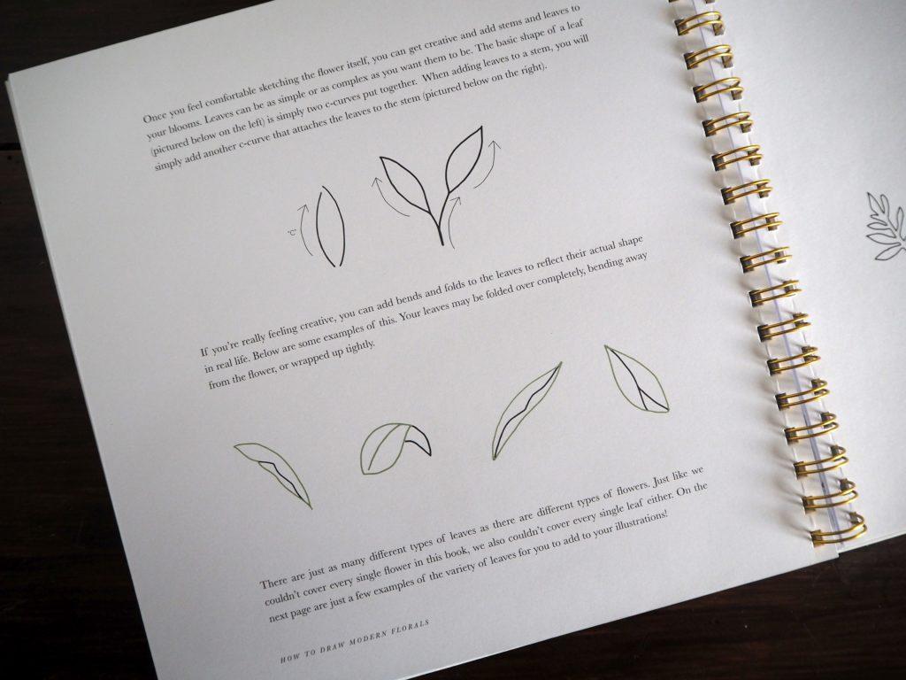 2017-09-skoen-och-kreativ-sonntagslektuere-rezension-september-how-to-draw-modern-florals (19)