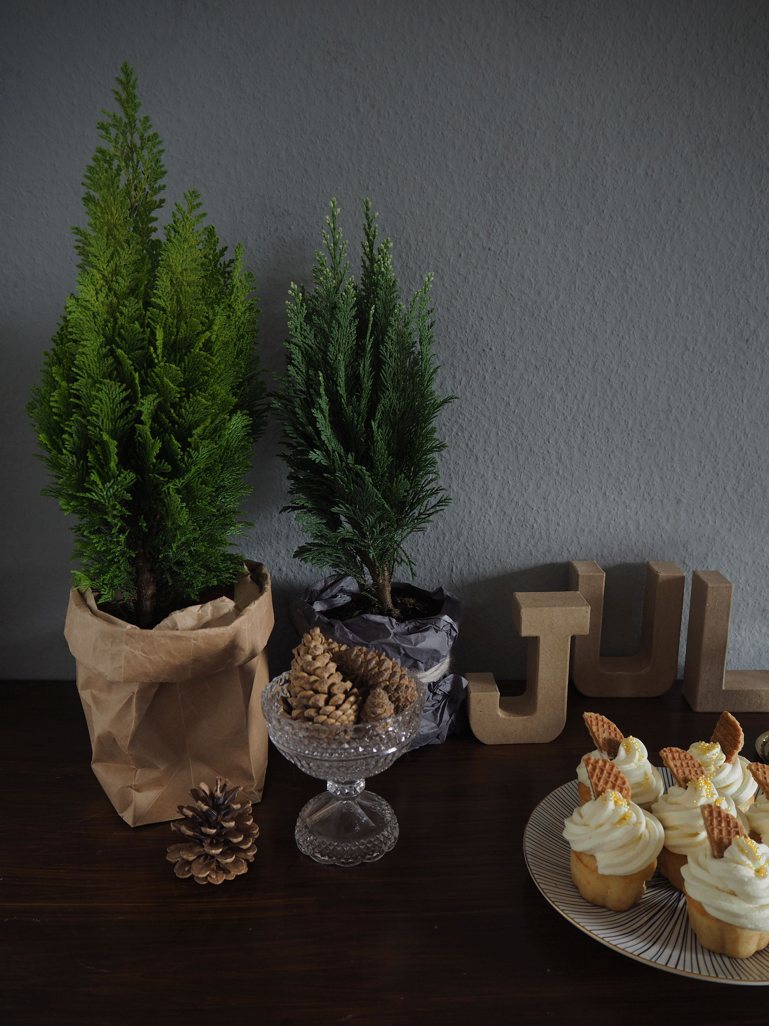 2012-12-skoen-och-kreativ-food-cake-cookie-love-vanille-sekt-cupcakes (5)