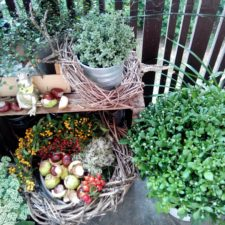 2016-10-skoen-och-kreativ-decoration-fall-is-moving-in-3