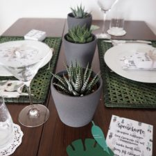 2016-08-summer-succulents-party-tabledecor (8)