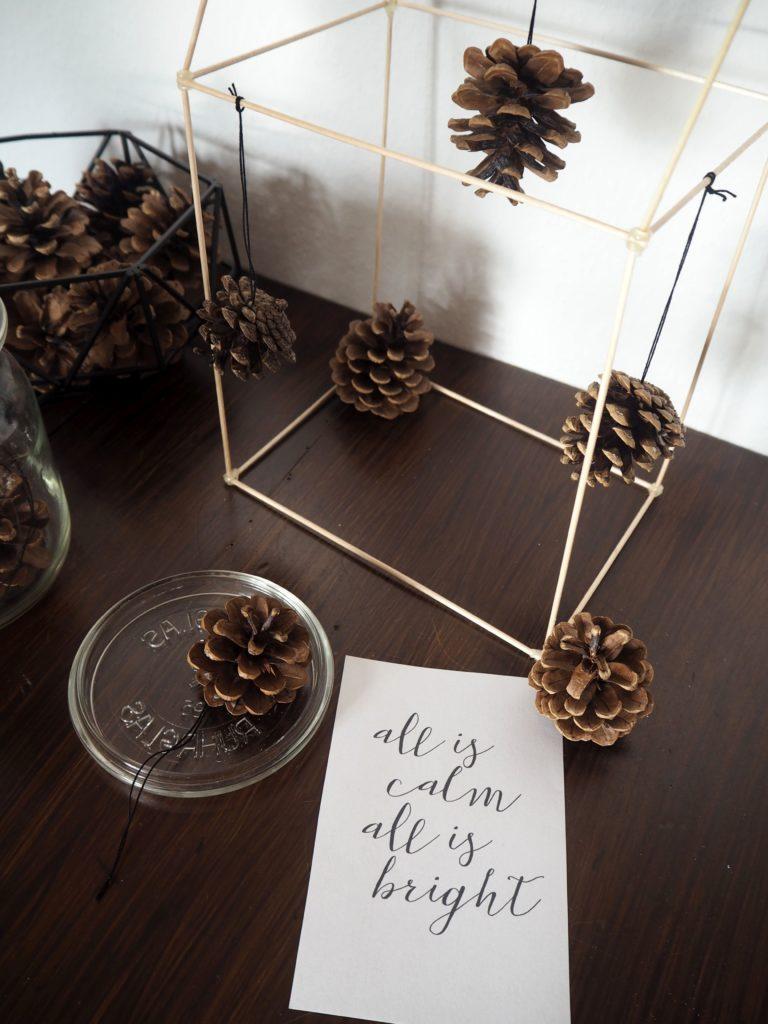 2016-12-skoen-och-kreativ-adventskalender-xmas-in-a-jar-diy-baumschmuck-tannenzapfen-1