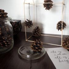 2016-12-skoen-och-kreativ-adventskalender-xmas-in-a-jar-diy-baumschmuck-tannenzapfen-9