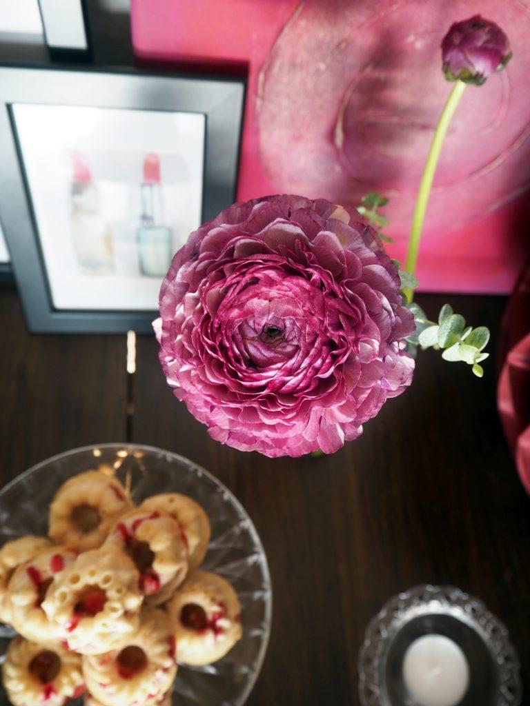 2017-skoen-och-kreativ-valentinstag-vanille-gugel-johannisbeeren (3)