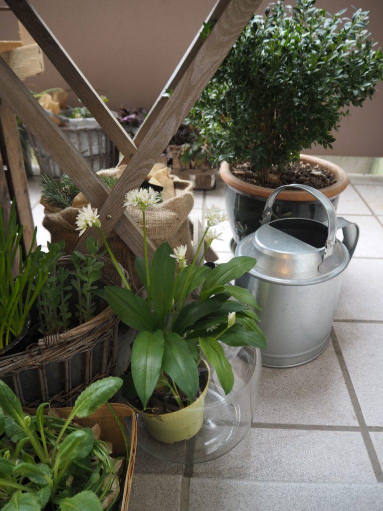 2017-03-skoen-och-kreativ-fruehlingsdeko-balkon-welcome-spring (3)