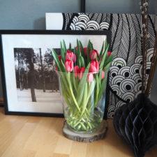 2017-03-skoen-och-kreativ-osterfreuden-deko-tulpen-fruehling (9)