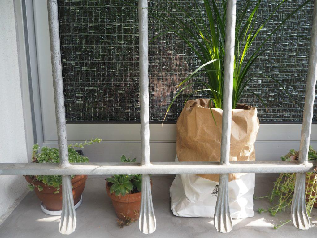 2017-07-skoen-och-kreativ-balkondekoration-urban-gardening-gelb-schwarz (1)