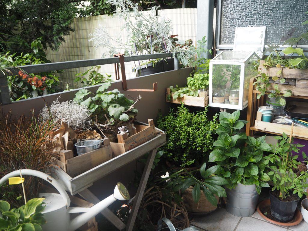 2017-07-skoen-och-kreativ-balkondekoration-urban-gardening-gelb-schwarz (11)