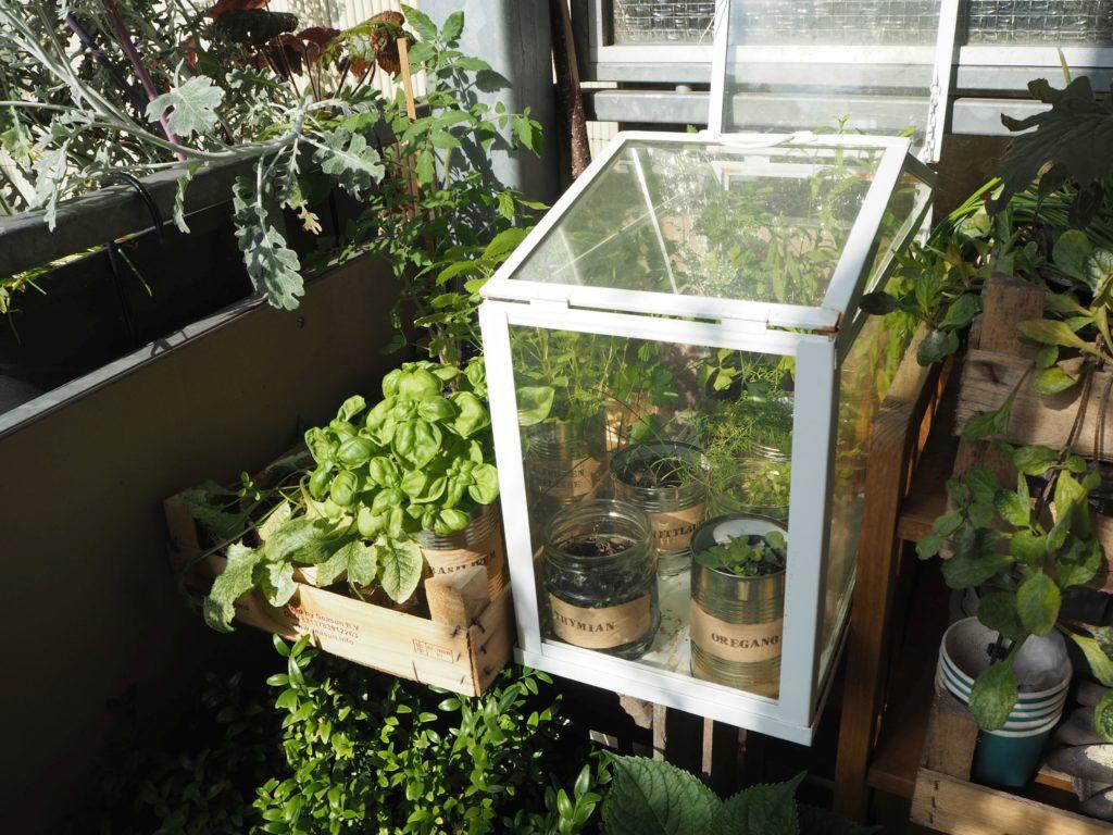 2017-07-skoen-och-kreativ-balkondekoration-urban-gardening-gelb-schwarz (12)