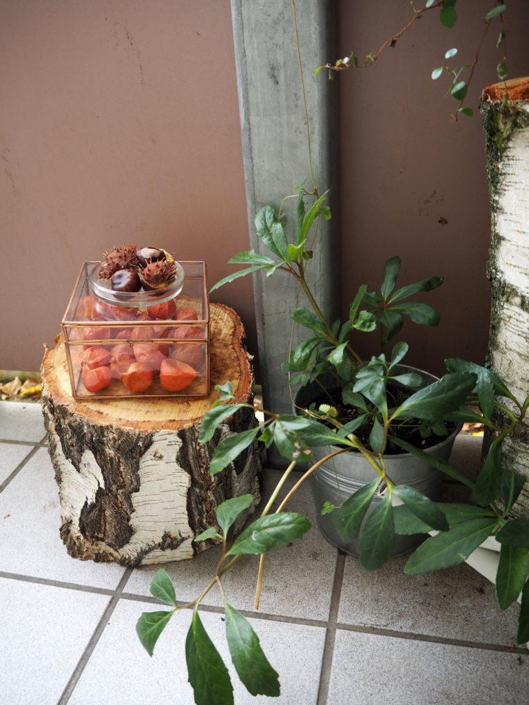 2017-10-skoen-och-kreativ-deko-balkon-herbst-update (3)
