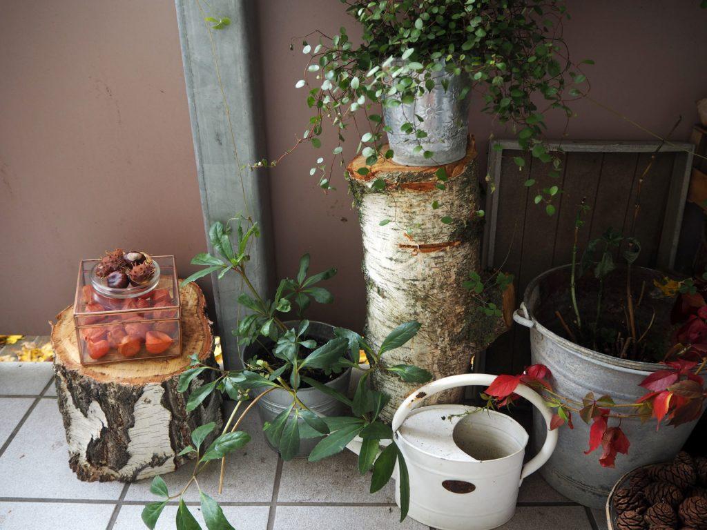 2017-10-skoen-och-kreativ-deko-balkon-herbst-update (5)