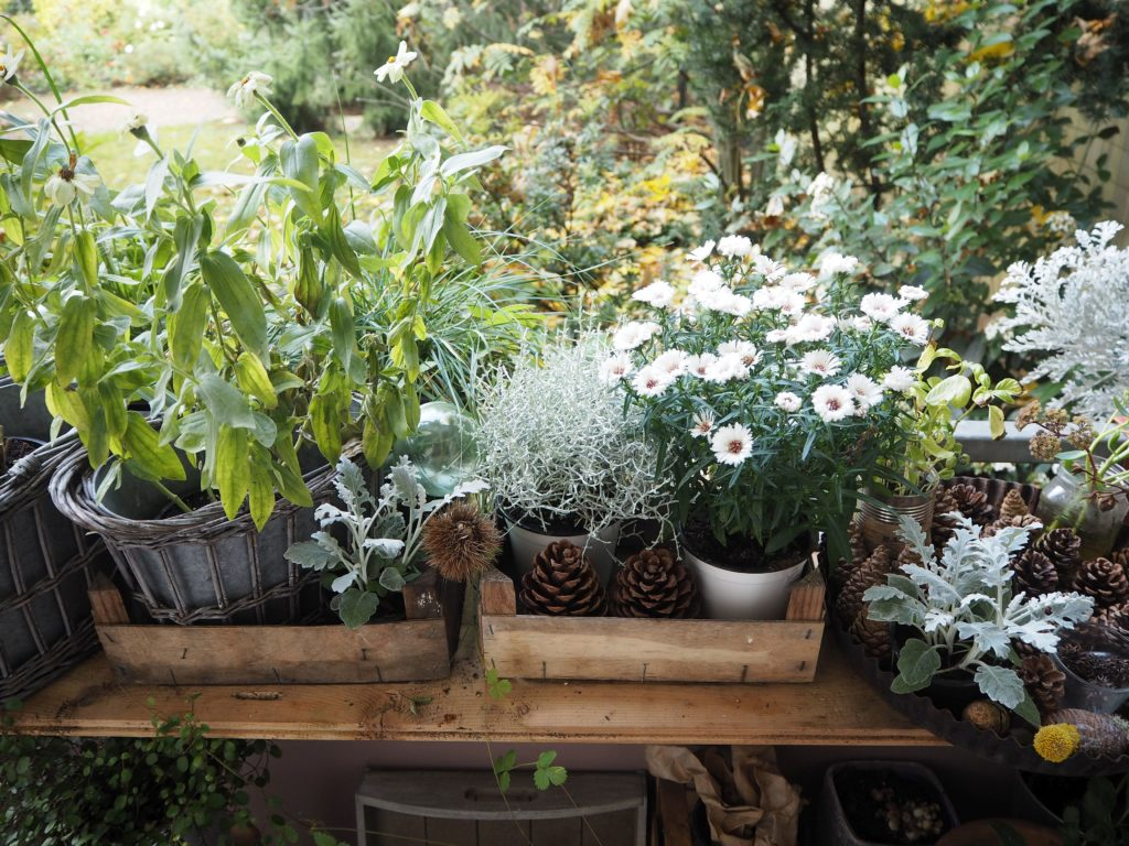 2017-10-skoen-och-kreativ-deko-balkon-herbst-update (6)