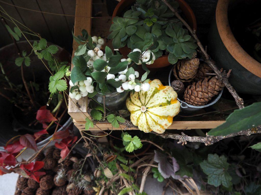 2017-10-skoen-och-kreativ-deko-balkon-herbst-update (8)